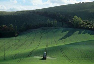 Época herbicida post-emergencia