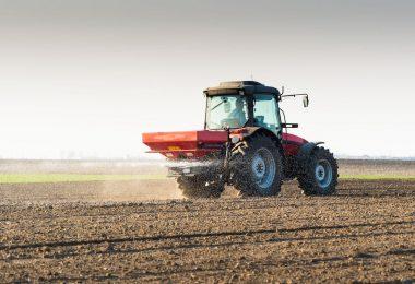 La importancia del correcto abonado del trigo de invierno