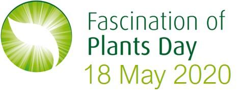 18 de mayo se celebra el Día Internacional de la Fascinación por las Plantas