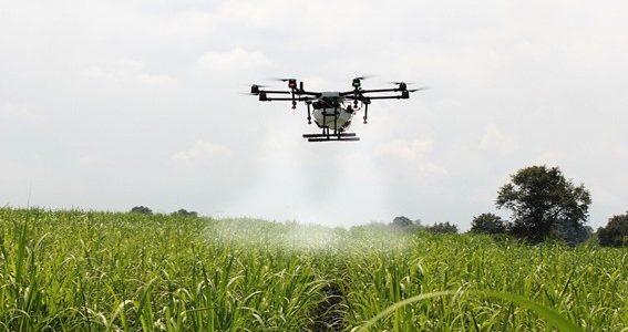 Nuevas tecnologías al servicio de la sostenibilidad agrícola